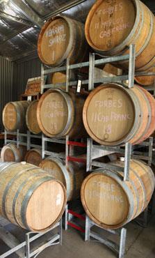 Forbes-Wine-rhs-barrels-reisling-wine